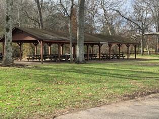 Edwin Warner Park Area 11