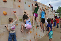 Cumberland Park: Climbing Wall